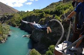 new zealand bungy