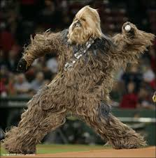 chewbacca from star wars