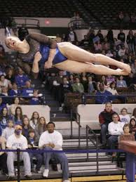 gymnastic vaulting