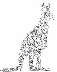 kangaroo color pages