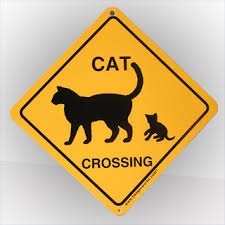 cat crossing sign