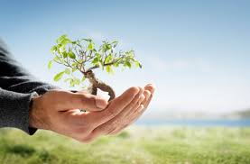 greening environment