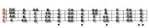 bass fret