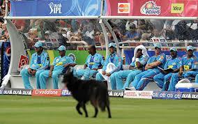 indians watch