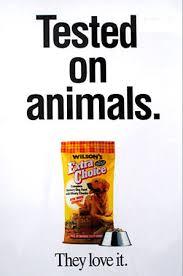 animal testing posters