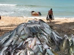 puerto rico fishing