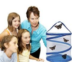 butterfly science