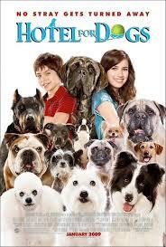 dogs hotel movie