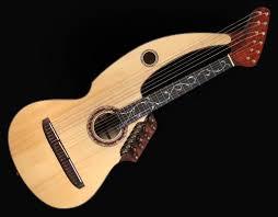 20 string guitar