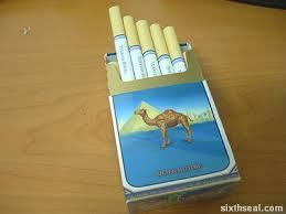 camel smoke