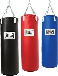 boxing bag everlast