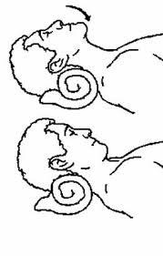 neck rehabilitation