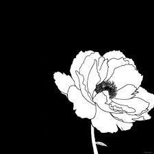 black white prints