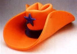 novelty cowboy hat