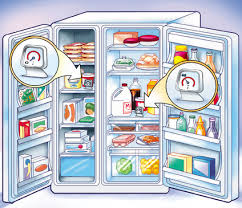 food storage fridge