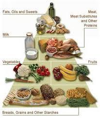 food group pyramids