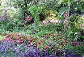 annual flower gardening