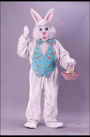 male bunny costume