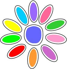 color daisy
