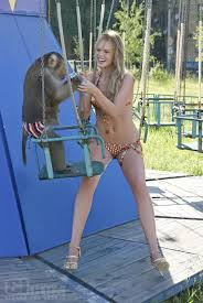 monkey writing