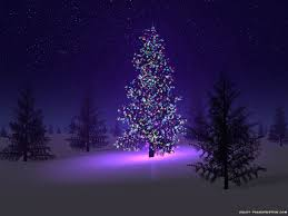 beautiful christmas trees