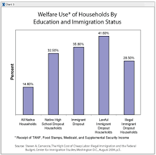 charts on immigration
