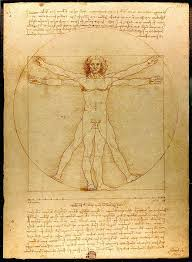 leonardo da vinci the vitruvian man