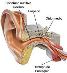 oido inflamado
