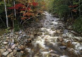 mountain stream photos