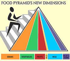 food nutrition pyramid