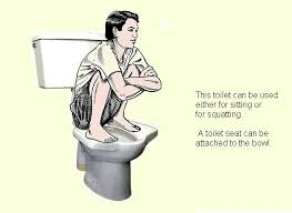 squat toilet seat