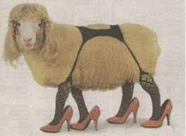 [Image: sexy_sheep.jpg&t=1]