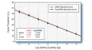qpcr standard curve