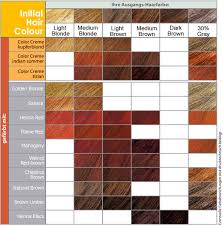 hair shades chart