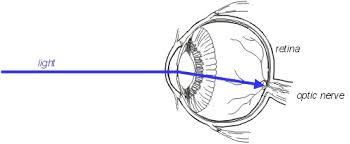 blind spot diagram