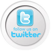 follow us on twitter button