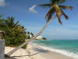 sandy beach pics