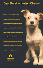 adoption pedigree