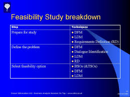 feasibility analysis example