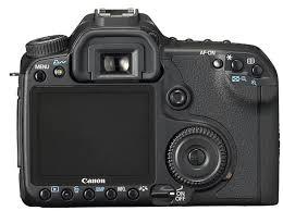 canon 40d photos
