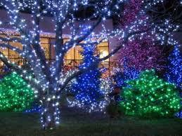 green xmas lights