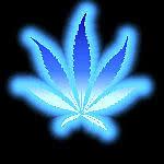 blue weed