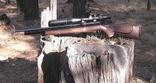 hunting with airguns