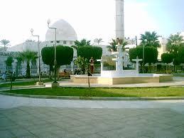 اخبار فلسطين96 Palestine_510899251