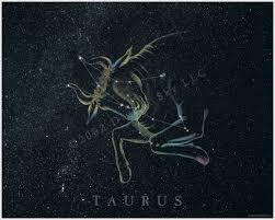 taurus art
