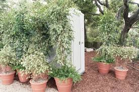 luxury porta potty