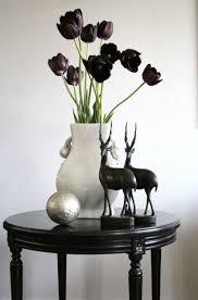 black tulips flowers