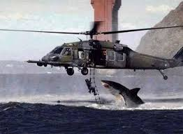 great white jump