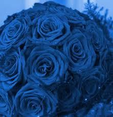 blue wedding photos