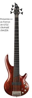 cort curbow 5 string